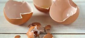 Ne bacajte ljusku jajeta